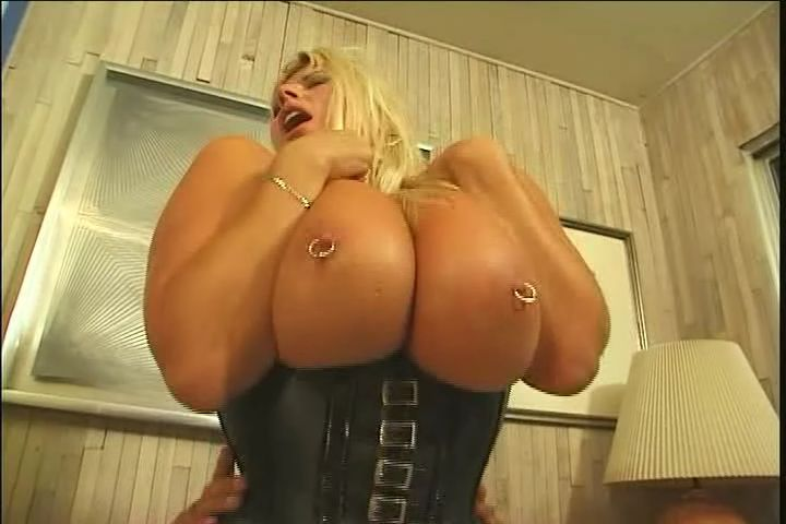 Big Boob Nifty Fifties DVD - Starring: Dana Hayes, Echo ...